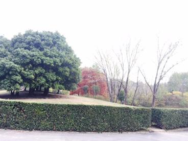 千里北公園の画像1