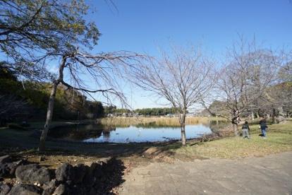大百池公園の画像2