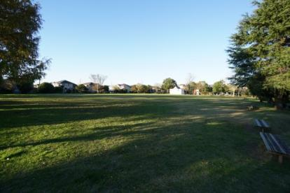やすらぎの広場公園の画像3