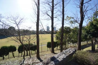有吉公園の画像3