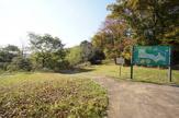 まきぞの自然公園