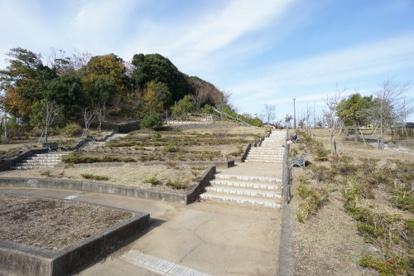 おゆみ野南公園の画像1