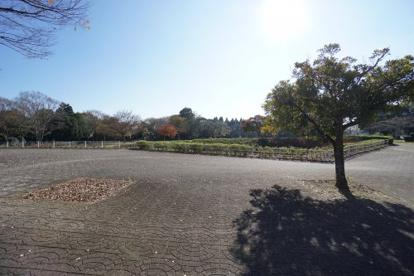 昭和の森の画像3