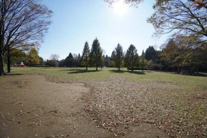 昭和の森の画像4