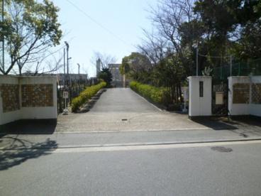 京都市立 新林小学校の画像1