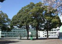 南毛利小学校
