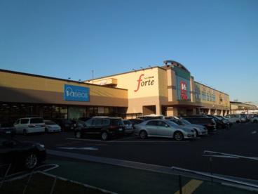 ベルク フォルテ森永橋店の画像1
