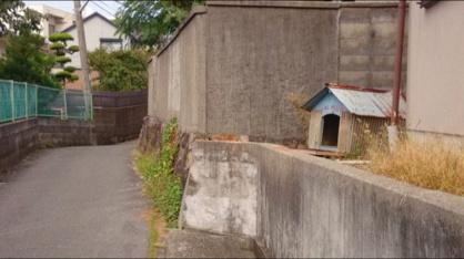 今は亡きラッキーの家の画像2