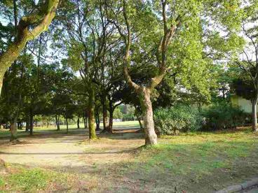 中央緑地公園の画像3