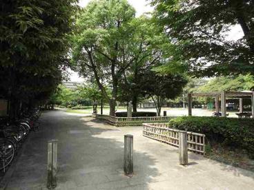 鵜の森公園の画像1
