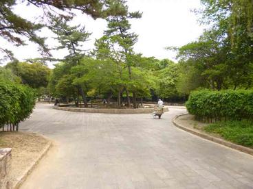 鵜の森公園の画像3