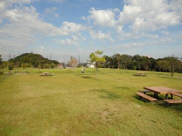 南部丘陵公園(南ゾーン)の画像5
