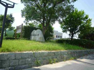 楠中央緑地公園の画像1