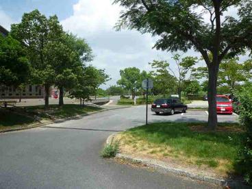 楠中央緑地公園の画像2