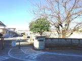 辰巳台西小学校