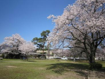 南郷公園の画像2