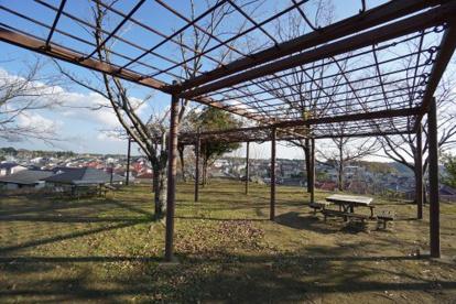 越智北公園の画像2