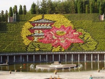 宇治市植物公園の画像1