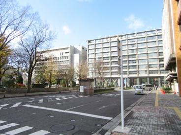 千葉県庁の画像1