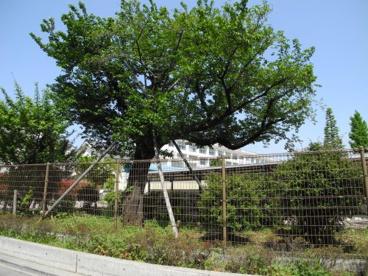 南田中小学校の画像2