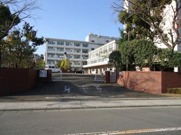 神奈川県県立上鶴間高等学校の画像1