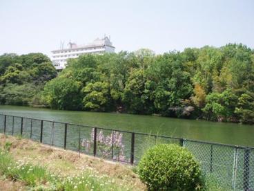 三保ヶ池の画像1