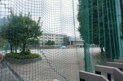 大泉中学校の画像1
