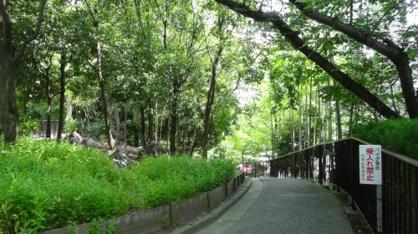 新芦屋中央公園の画像1