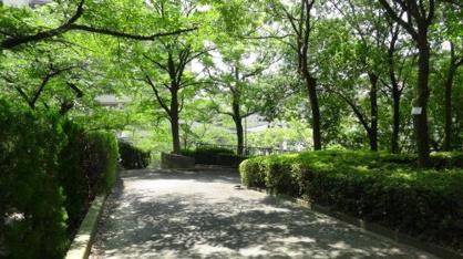 新芦屋中央公園の画像3