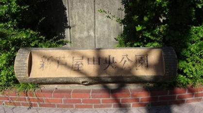 新芦屋中央公園の画像4