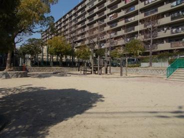 だいのき公園の画像3