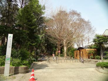 都立林試の森公園の画像1