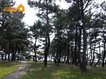 望海浜公園の画像4