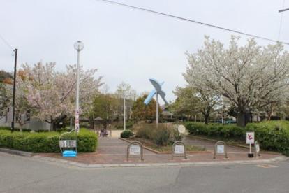 渋谷公園の画像2
