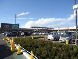 ノジマ NEW城山店