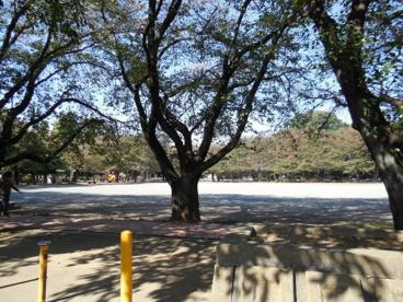 鴻巣公園の画像1