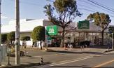 FUJI松が丘店