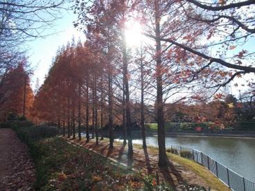 佐竹公園の画像4