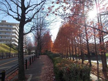 佐竹公園の画像5