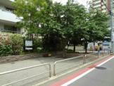品川区立中六桜広場