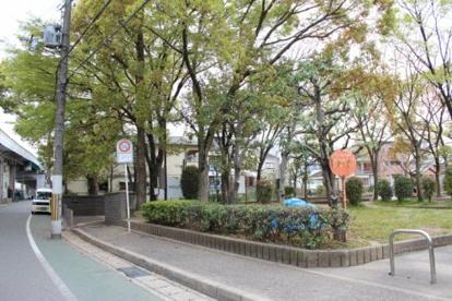 石橋駅前公園の画像2