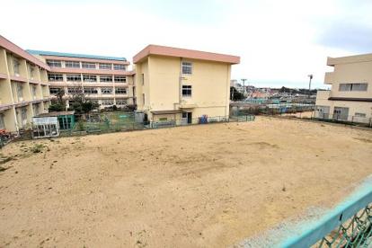 神戸市立多聞台小学校の画像5