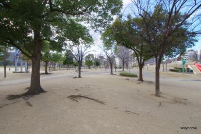 扇町公園の画像1