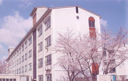 新田南小学校の画像1