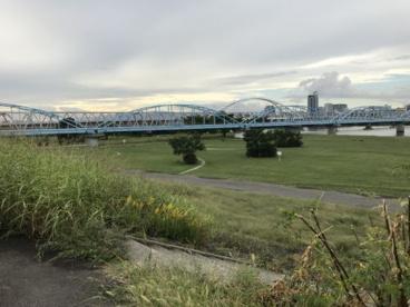 淀川河川敷公園長柄地区の画像2