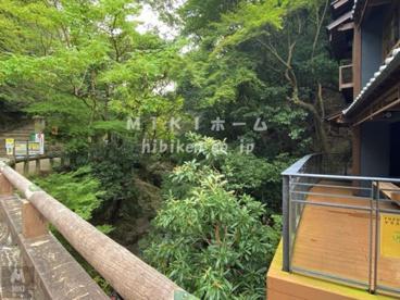 橋本亭の画像3
