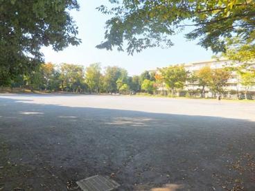 押立公園の画像1