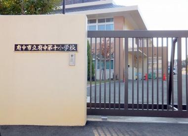 府中市立府中第十小学校の画像1