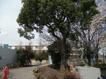 府中市立府中第十小学校の画像2