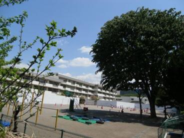 府中市立府中第一小学校の画像1
